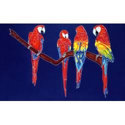 perroquet bleu marine