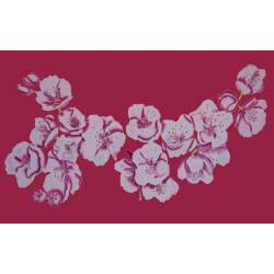 Cerisier fuchsia