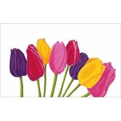 tulipe blanc